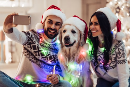 Have_More_Fun_for_Less_with_Your_Four-Legged_FriendsHave_More_Fun_for_Less_with_Your_Four-Legged_Friends5-min